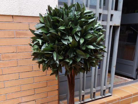 planta-exterior-01